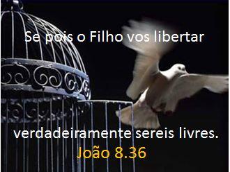 verdadeira-liberdade